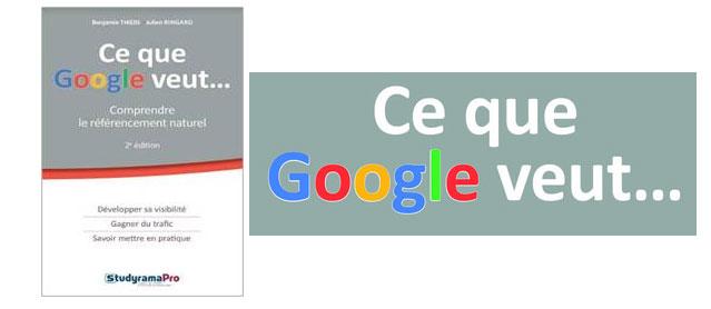 Vous rêvez de comprendre le référencement naturel et souhaitez rendre visible dans google votre site?